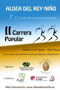 CartelCarreraPopular2013